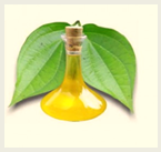 beetle leaf and mustard oil for cold