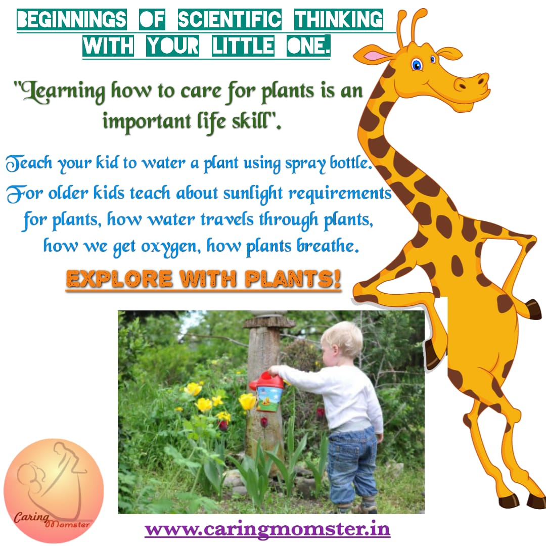 Activity for 6-7 year old- Plant Activity
